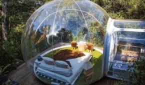 Bubble catálgo